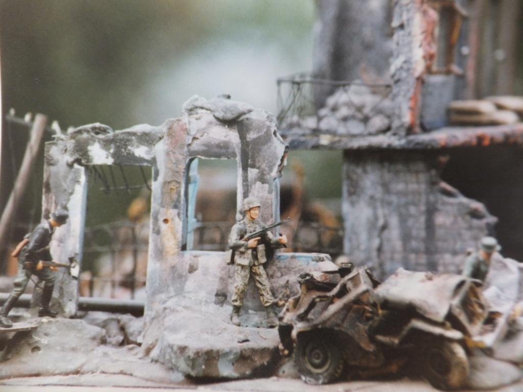 Feu mes anciens dioramas Dscf6835