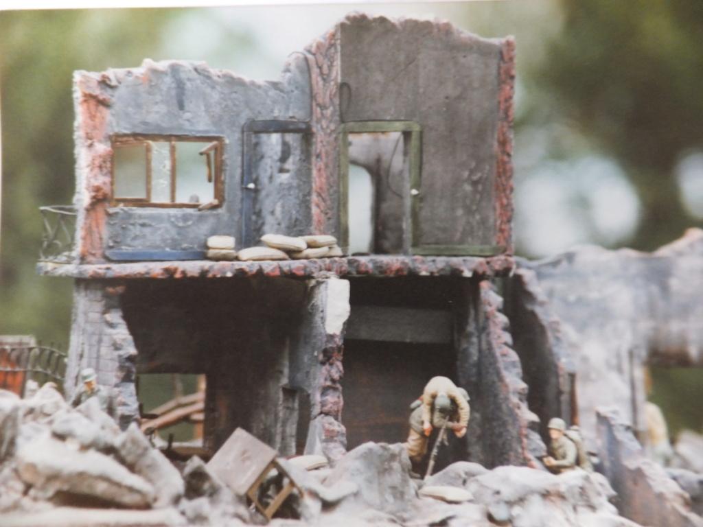 Feu mes anciens dioramas Dscf6836
