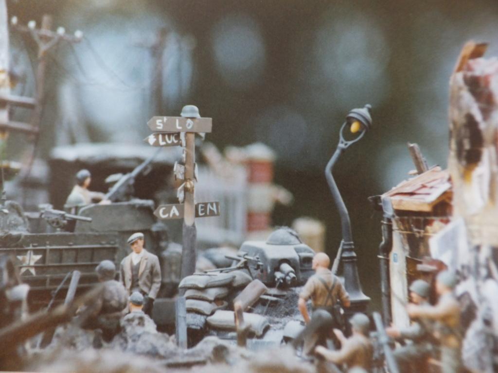 Feu mes anciens dioramas Dscf6841