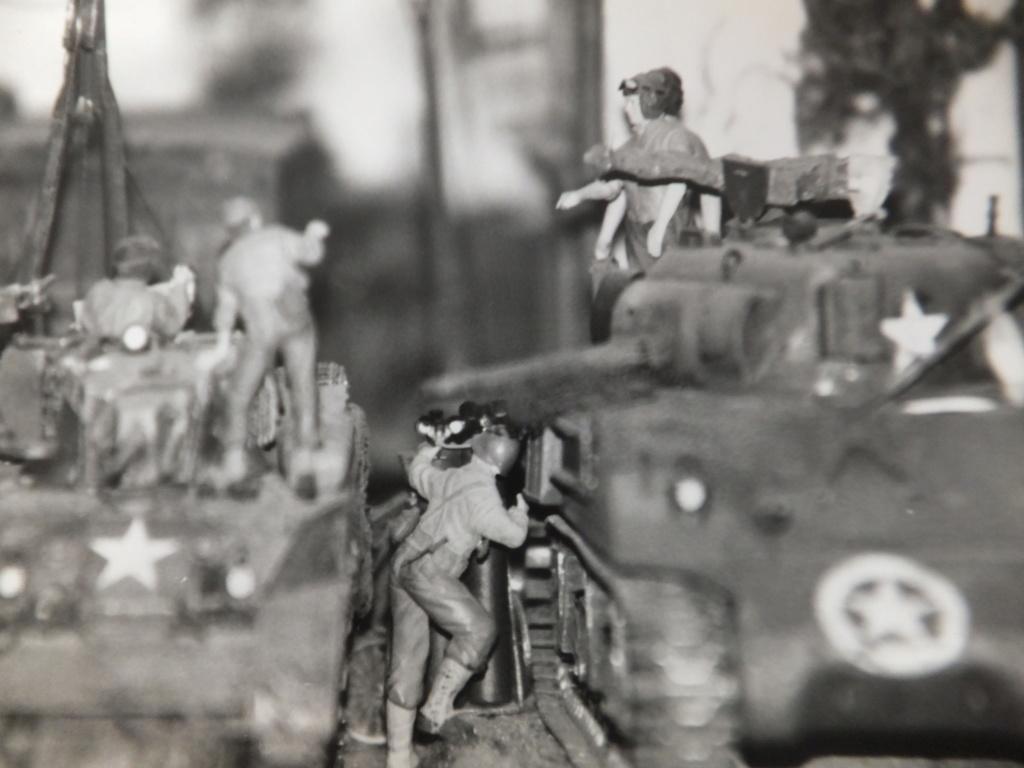 Feu mes anciens dioramas Dscf6843