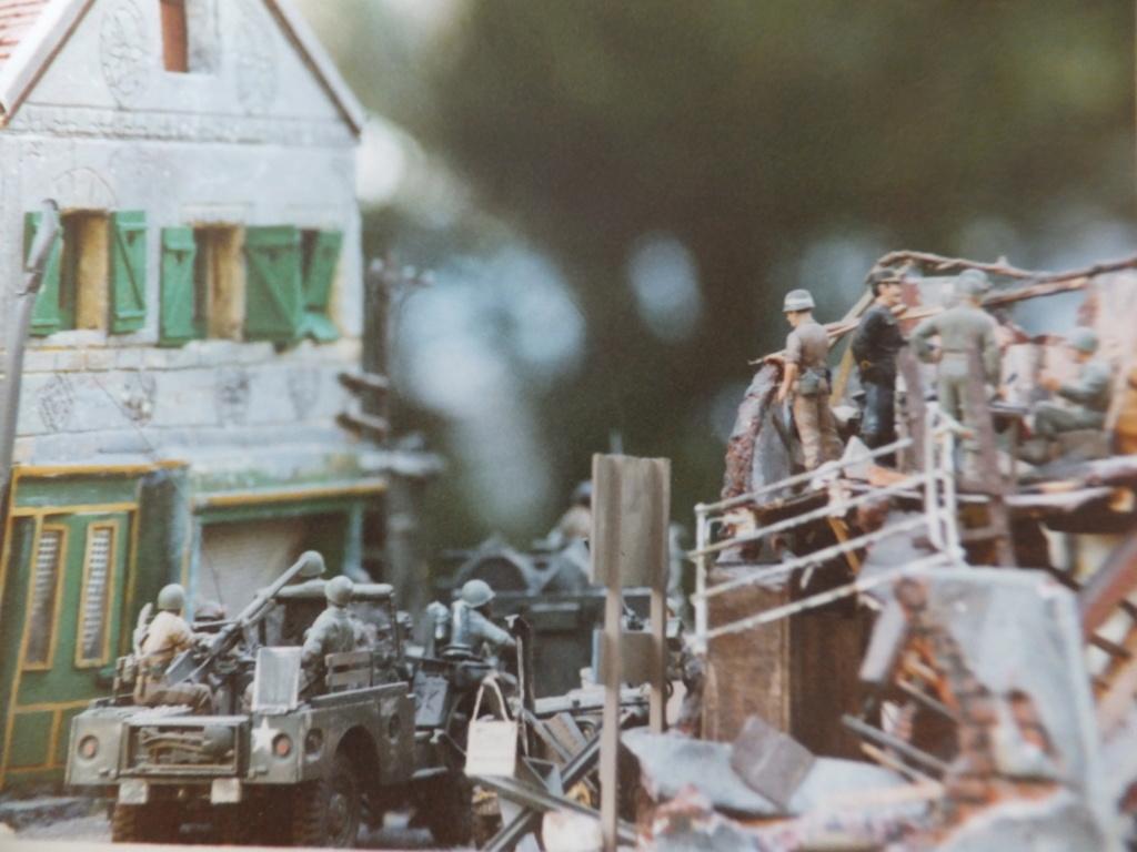 Feu mes anciens dioramas Dscf6845
