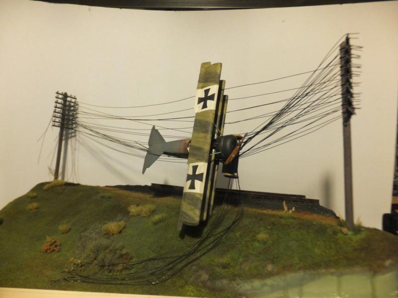 """L' oiseau blessé d'une flèche 1918 -[RODEN] Fokker DR1 1/32 (ROD 605)-[ICM] Ford t touring 1/35 (n°35667) """"FIN"""" - Page 13 Dscf8275"""