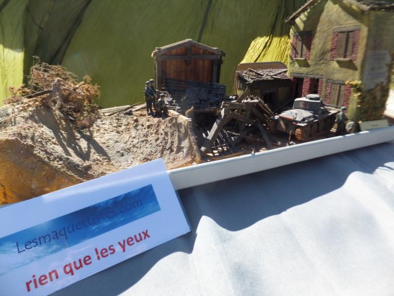 Chez Manu (Capitaine CONAN) Dscf8871