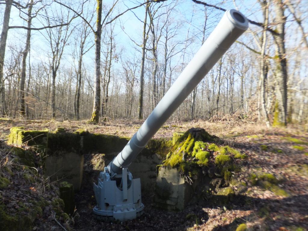 promenade au canon d'Hermeville en woevre Dscf9450