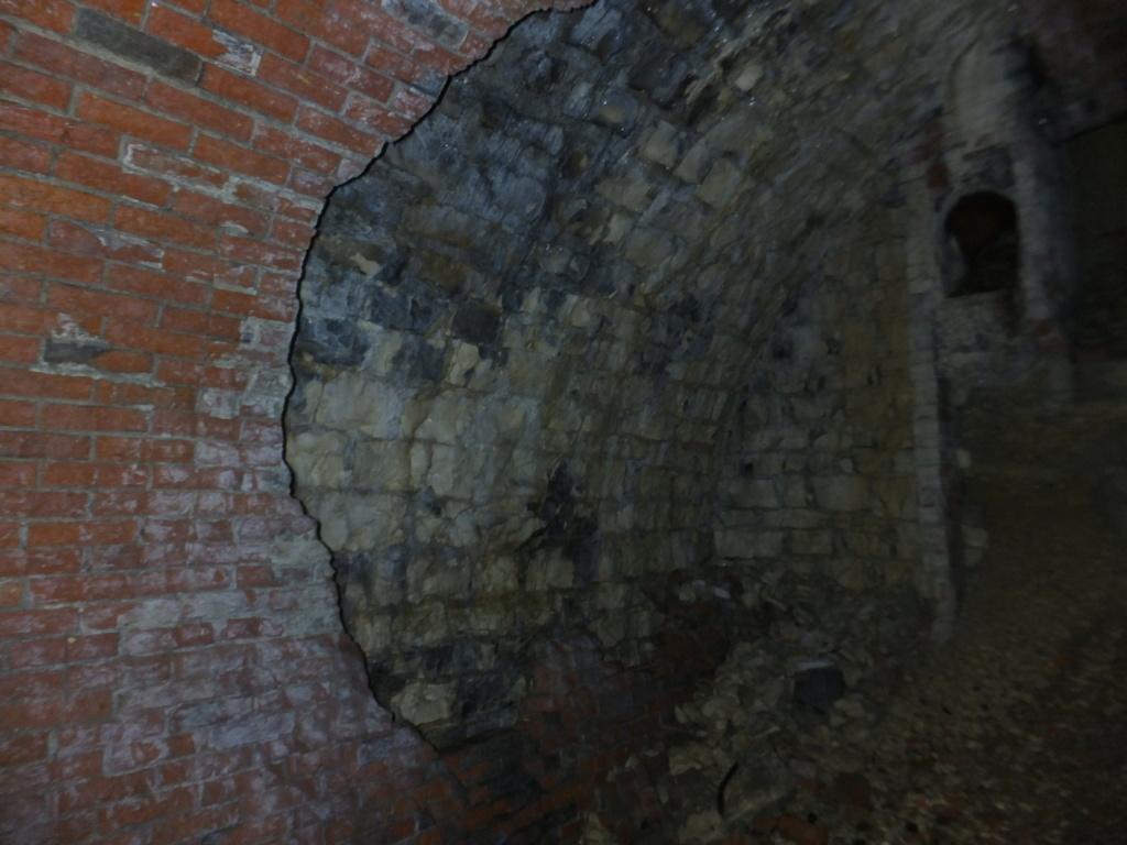 quatre cheminées pour se réchauffer à Froideterre  Dscf9537