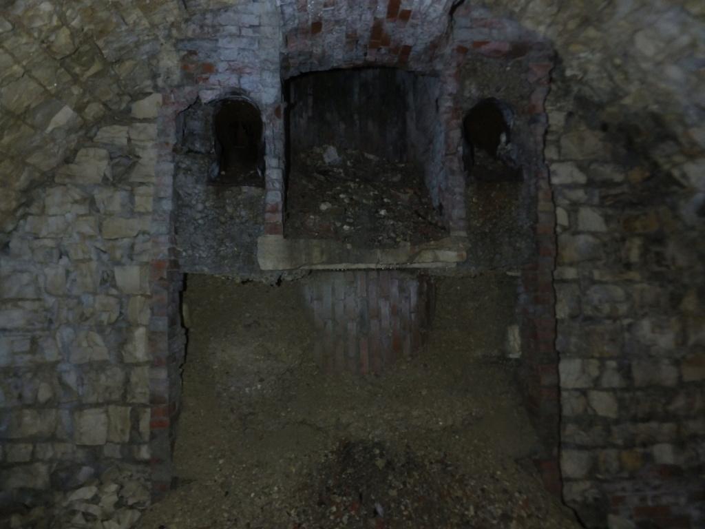 quatre cheminées pour se réchauffer à Froideterre  Dscf9539