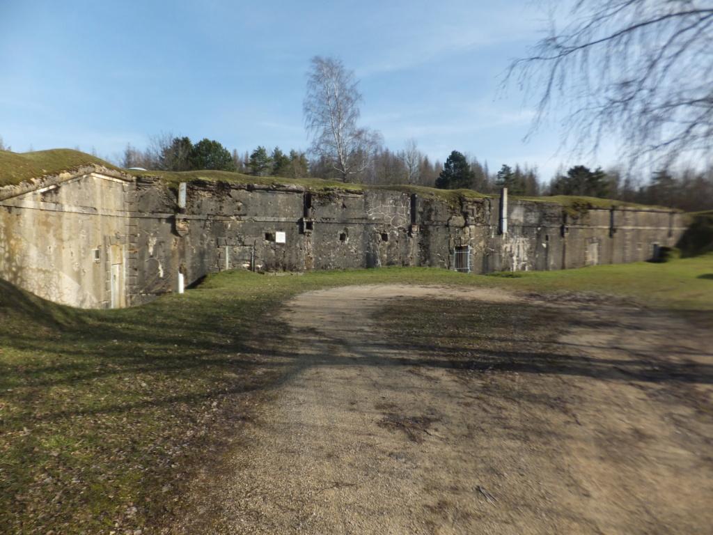 quatre cheminées pour se réchauffer à Froideterre  Dscf9613