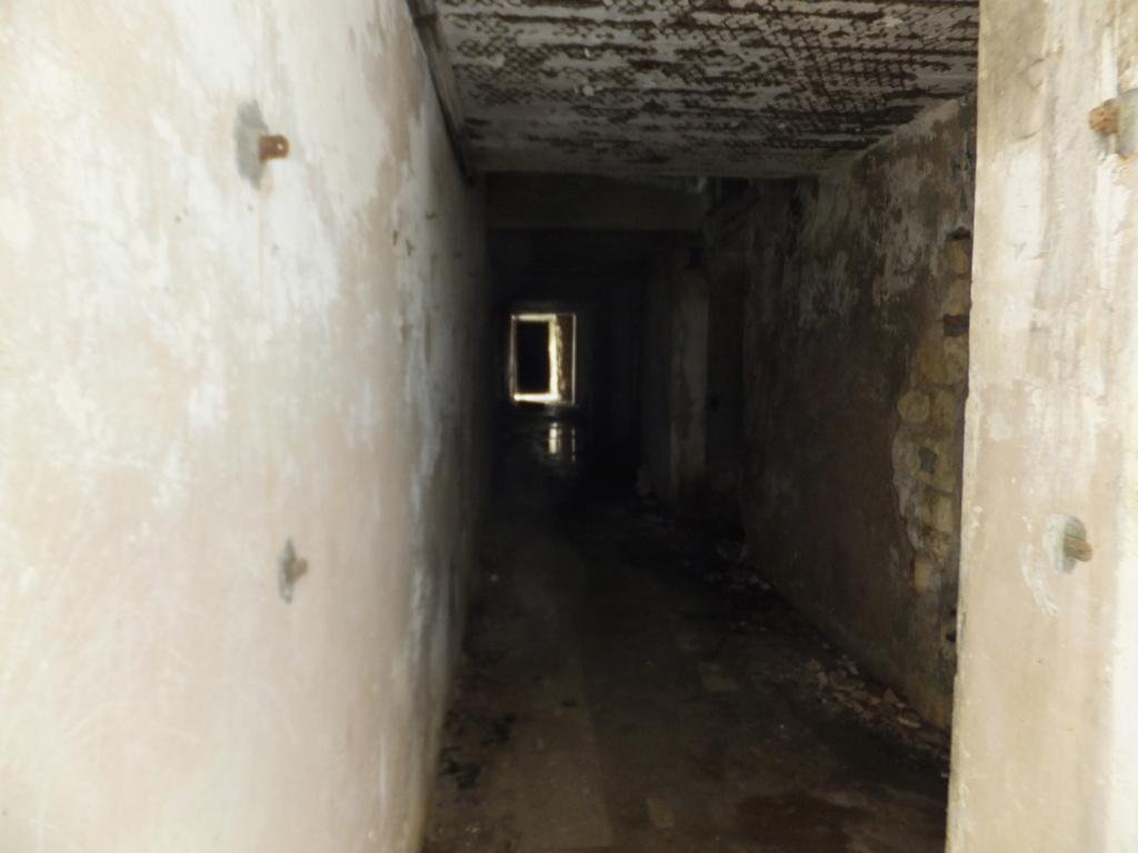 quatre cheminées pour se réchauffer à Froideterre  Dscf9614