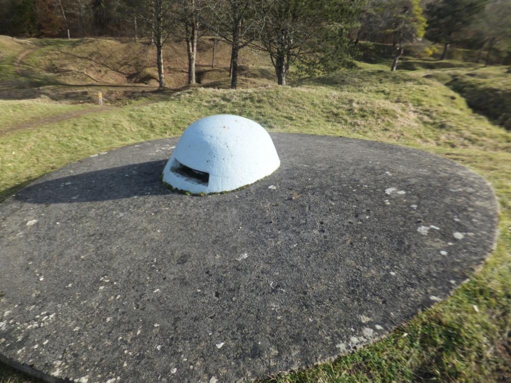 quatre cheminées pour se réchauffer à Froideterre  Dscf9618