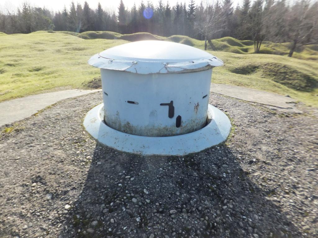 quatre cheminées pour se réchauffer à Froideterre  Dscf9619