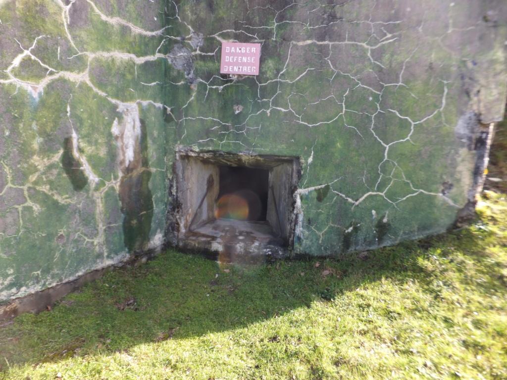 quatre cheminées pour se réchauffer à Froideterre  Dscf9623