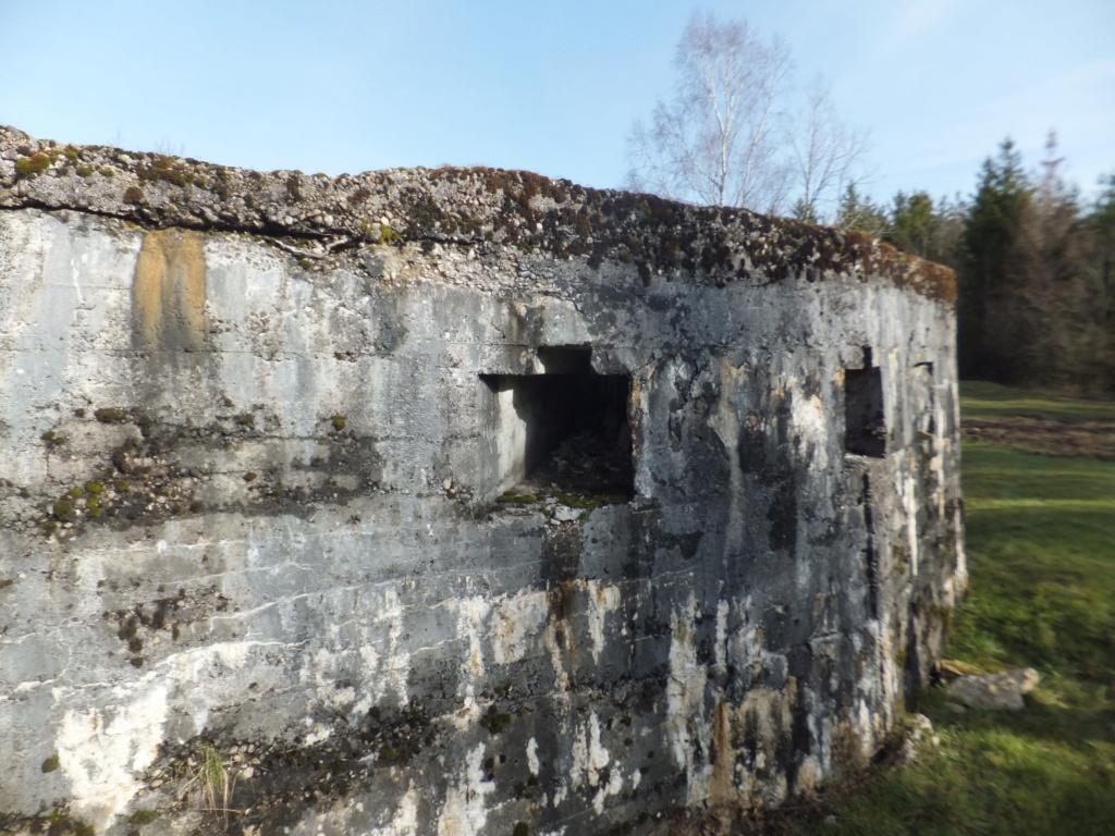 quatre cheminées pour se réchauffer à Froideterre  Dscf9626