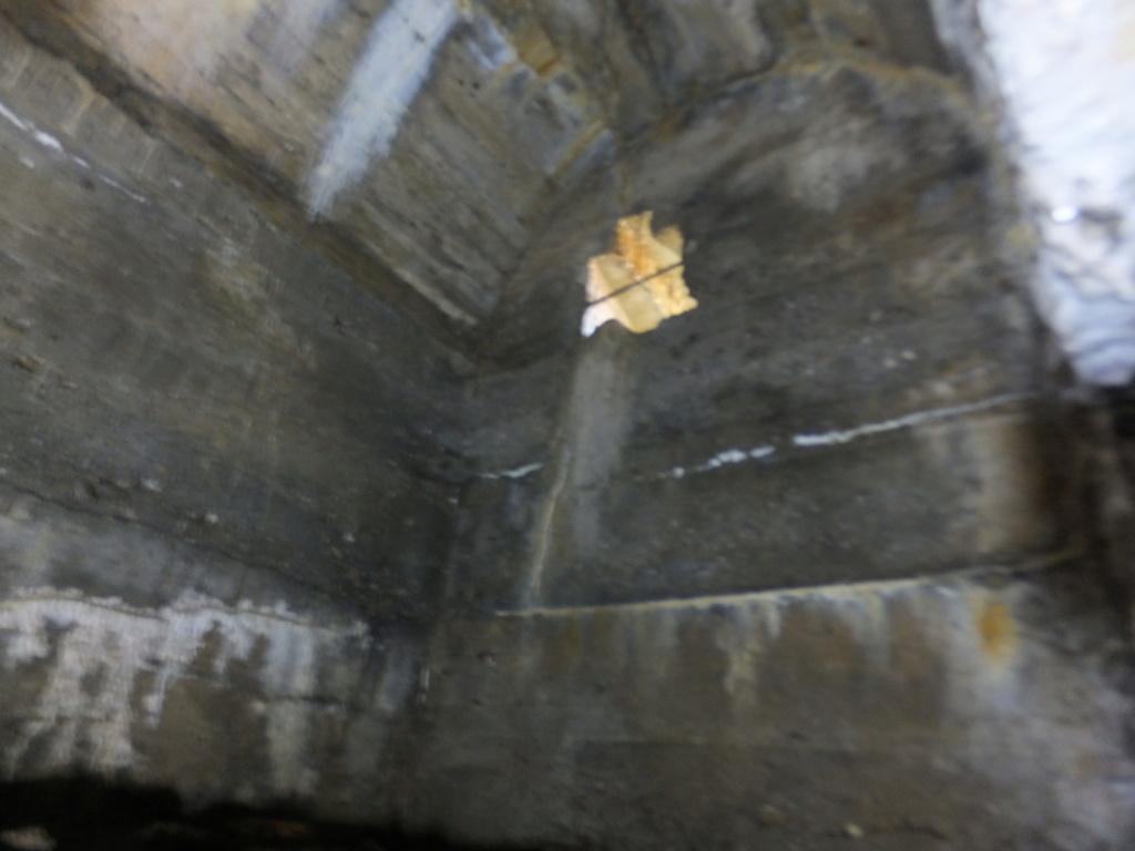 quatre cheminées pour se réchauffer à Froideterre  Dscf9627