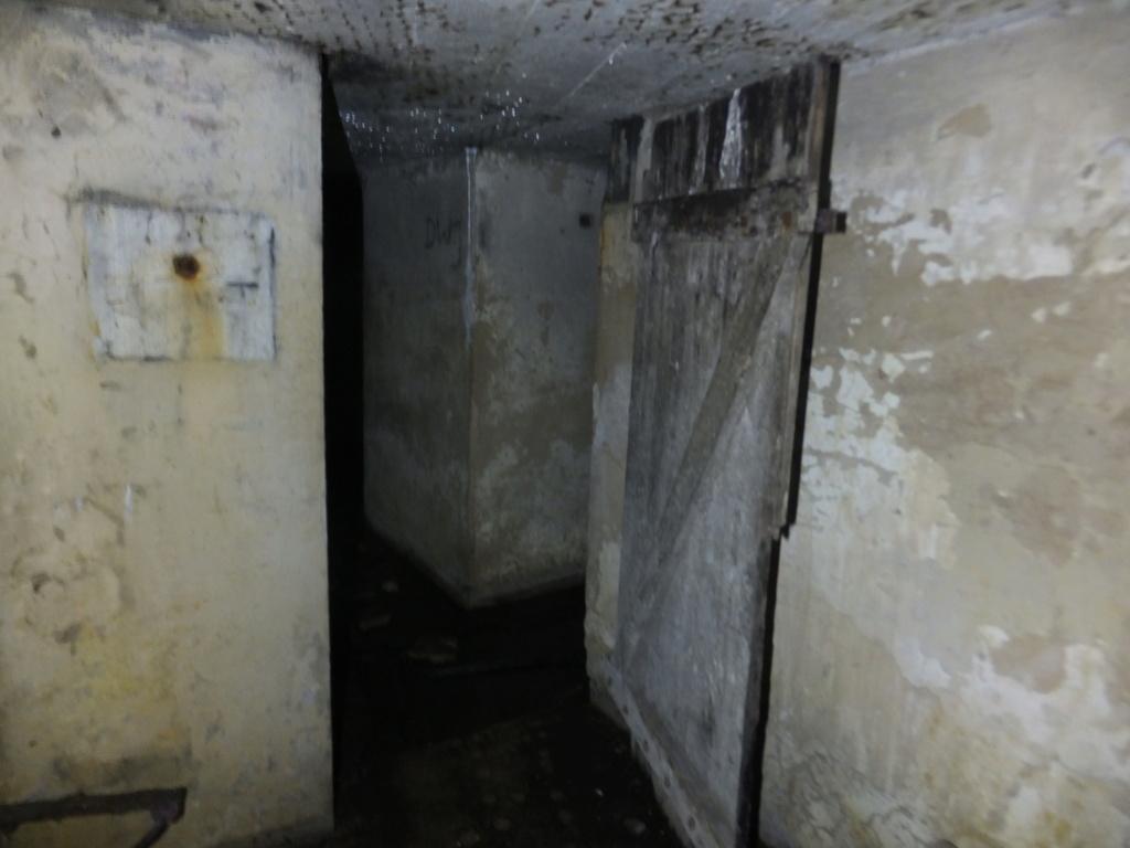 quatre cheminées pour se réchauffer à Froideterre  Dscf9633