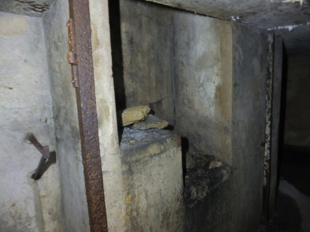 quatre cheminées pour se réchauffer à Froideterre  Dscf9634