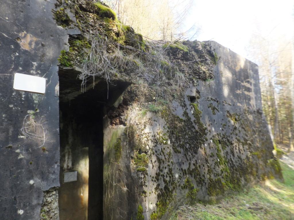 quatre cheminées pour se réchauffer à Froideterre  Dscf9638