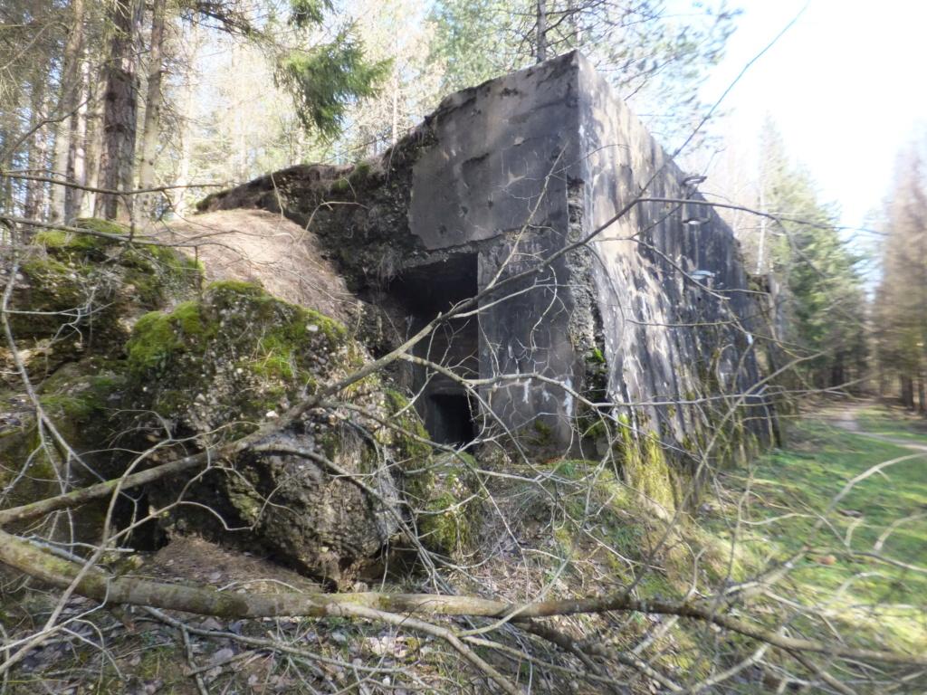 quatre cheminées pour se réchauffer à Froideterre  Dscf9640