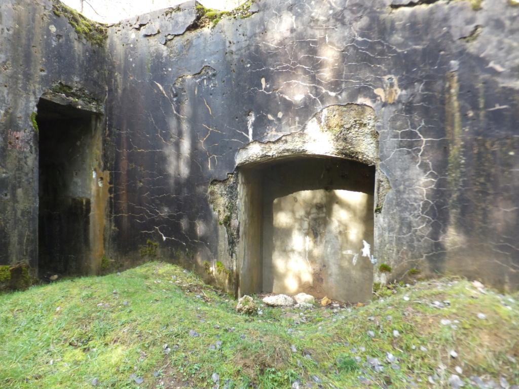 quatre cheminées pour se réchauffer à Froideterre  Dscf9641