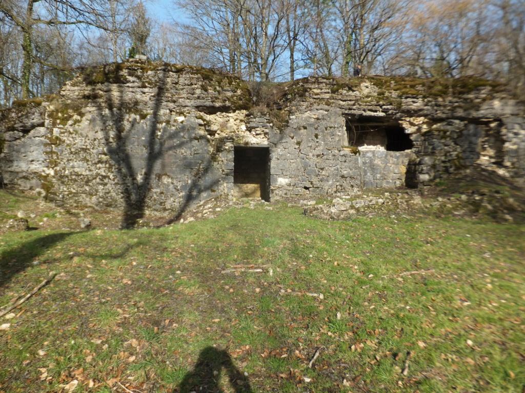quatre cheminées pour se réchauffer à Froideterre  Dscf9642