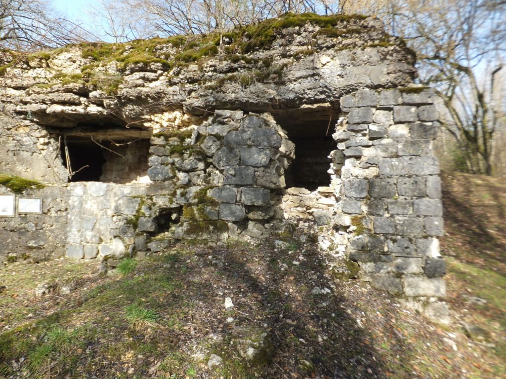 quatre cheminées pour se réchauffer à Froideterre  Dscf9710