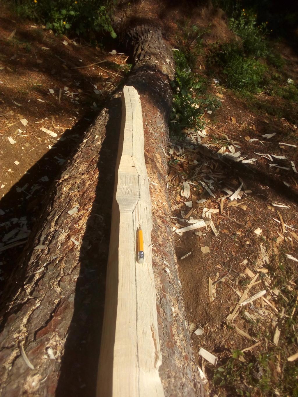Arco de Fraxinus angustifolia de Juan Antonio para el Intercambio de Arcos 2.019. Img_2083