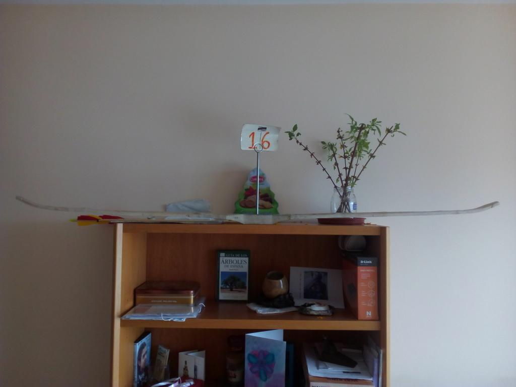 Arco de Fraxinus angustifolia de Juan Antonio para el Intercambio de Arcos 2.019. Img_2084