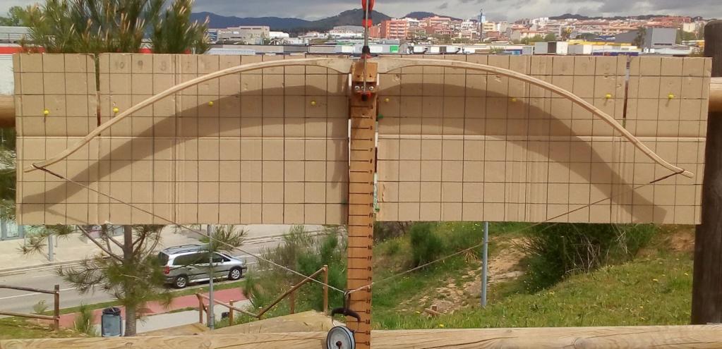 Arco de Fraxinus angustifolia de Juan Antonio para el Intercambio de Arcos 2.019. Img_2088