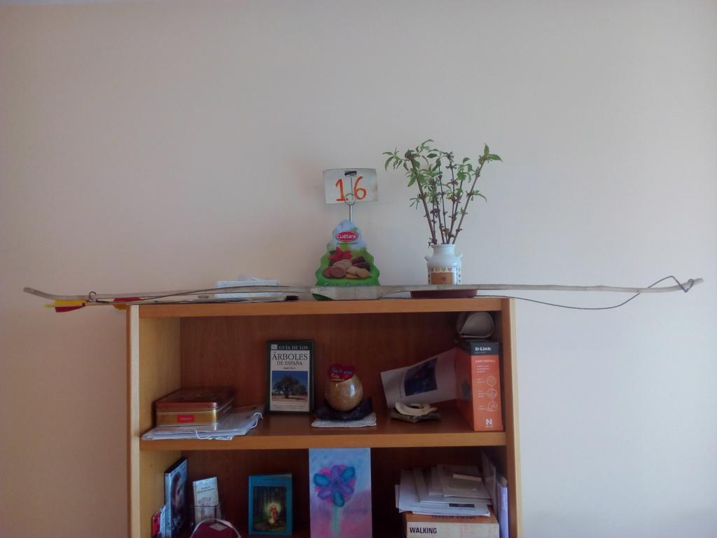 Arco de Fraxinus angustifolia de Juan Antonio para el Intercambio de Arcos 2.019. Img_2089