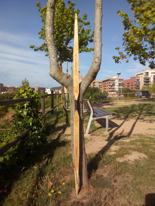 Arco de Fraxinus angustifolia de Juan Antonio para el Intercambio de Arcos 2.019. - Página 2 Img_2112
