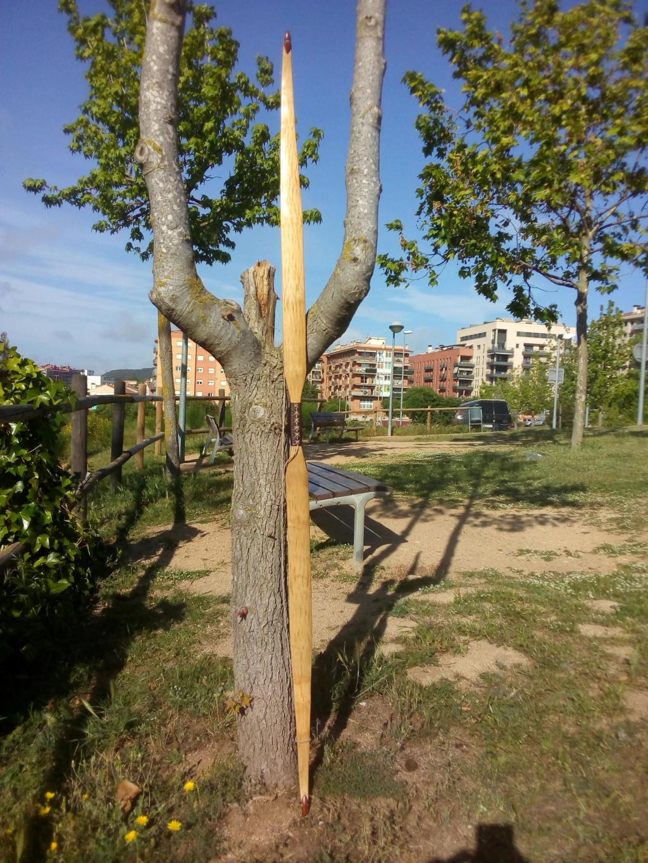 Arco de Fraxinus angustifolia de Juan Antonio para el Intercambio de Arcos 2.019. - Página 2 Img_2113