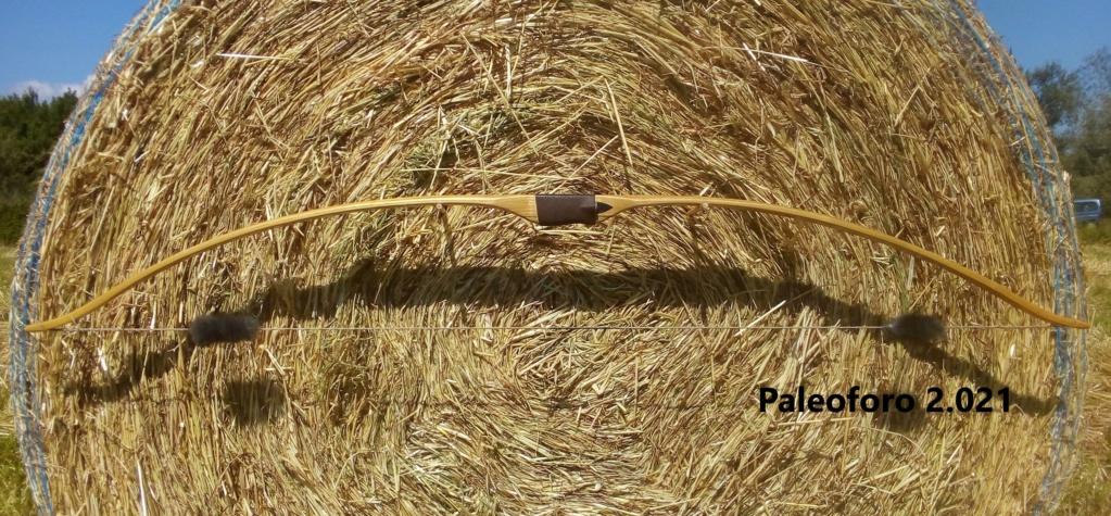 Arco de falsa acacia de 160 cm. Img_2201