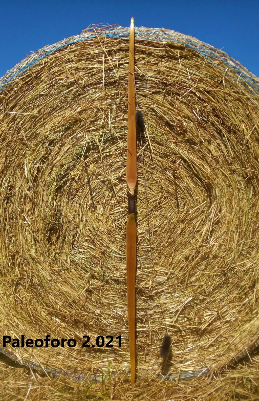Arco de falsa acacia de 160 cm. Img_2203