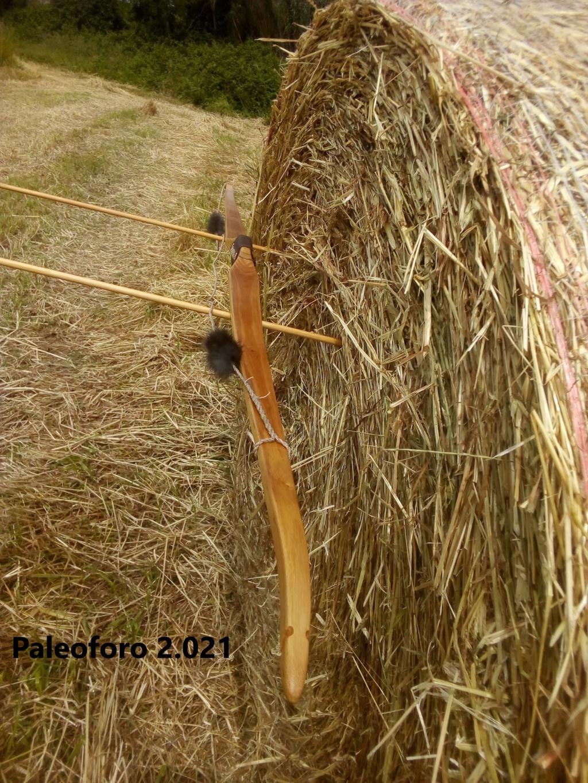 Arco de falsa acacia de 160 cm. Img_2208