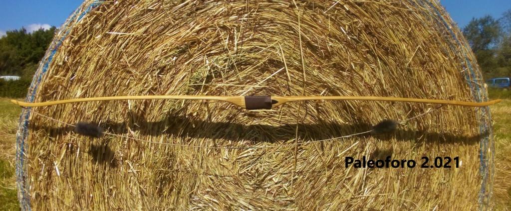 Arco de falsa acacia de 160 cm. Img_2213