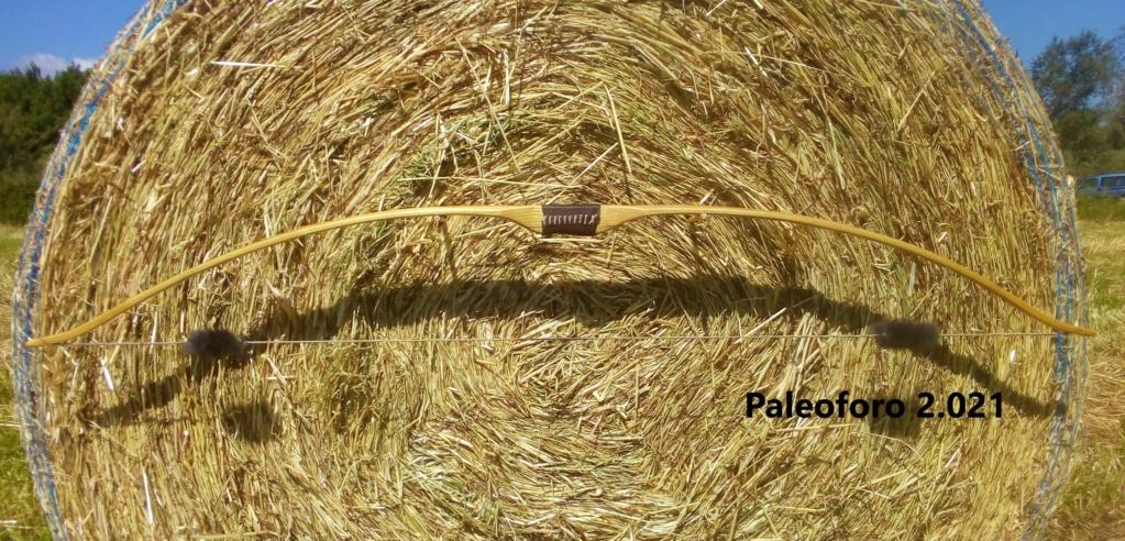 Arco de falsa acacia de 160 cm. Img_2214