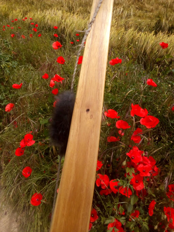 Arco de falsa acacia de 160 cm. Img_2221