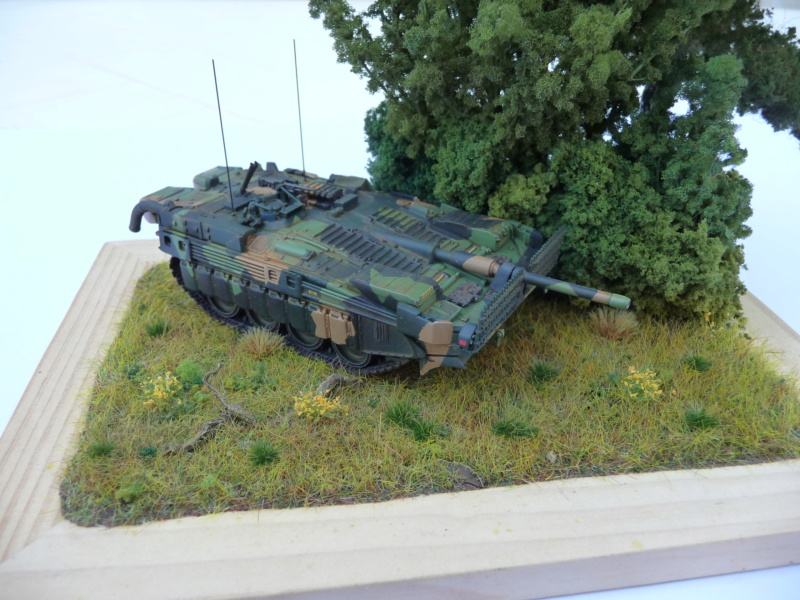 Strv 103C MBT 1/72 ( Trumpeter 07298 ) *** Terminé en pg 4 - Page 4 P1260516