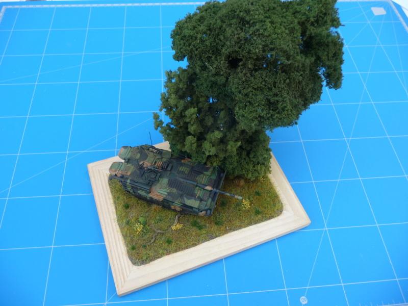 Strv 103C MBT 1/72 ( Trumpeter 07298 ) *** Terminé en pg 4 - Page 4 P1260518
