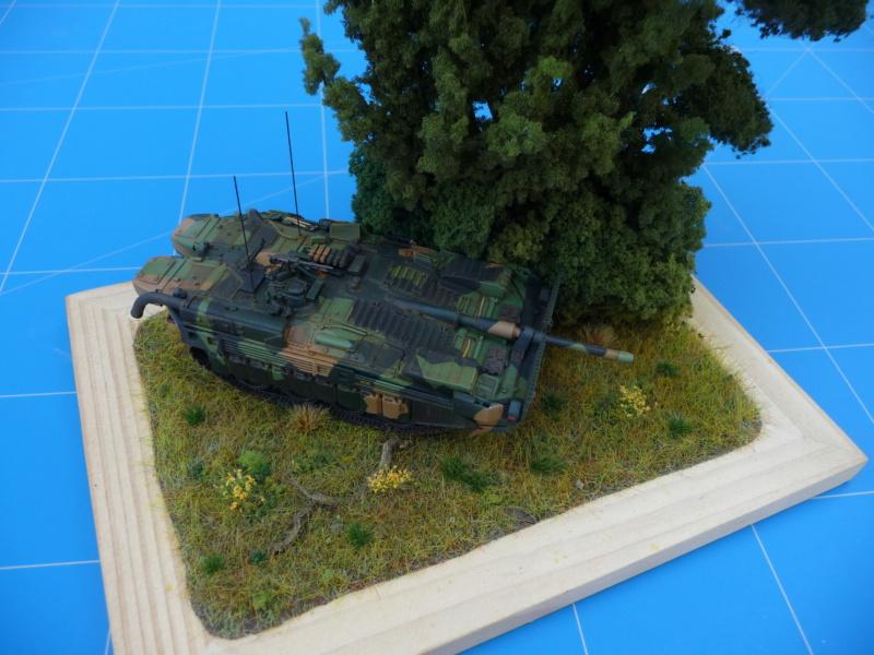 Strv 103C MBT 1/72 ( Trumpeter 07298 ) *** Terminé en pg 4 - Page 4 P1260519