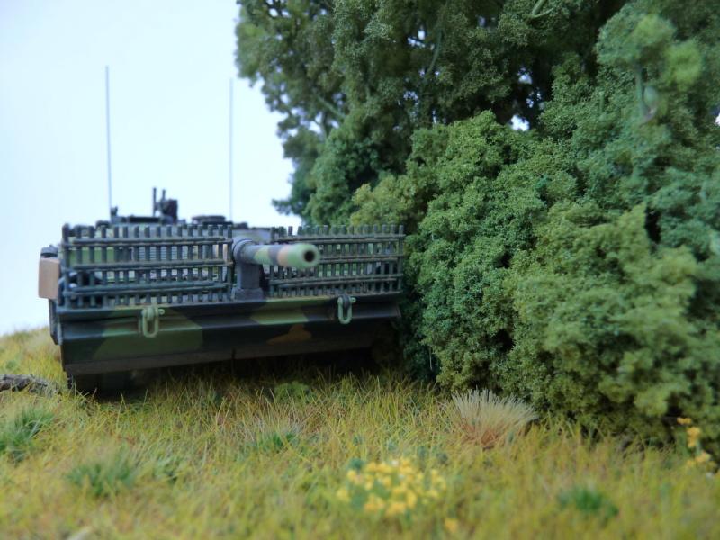 Strv 103C MBT 1/72 ( Trumpeter 07298 ) *** Terminé en pg 4 - Page 4 P1260520