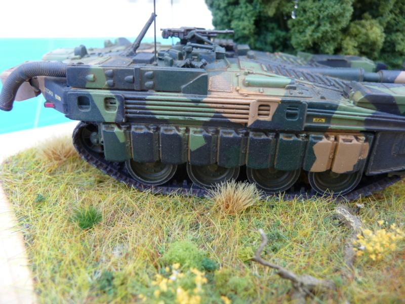 Strv 103C MBT 1/72 ( Trumpeter 07298 ) *** Terminé en pg 4 - Page 4 P1260521