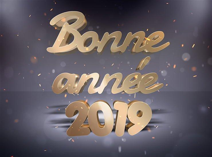 Bonne année 2019 - Meilleurs Vœux - Bonne santé à tous Carte-10