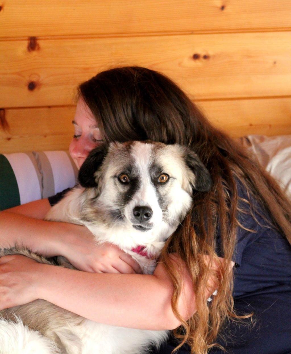 Lexa (ex-Alexa) - femelle - refuge de Târgu Frumos - adoptée (dept 88) - Page 2 37262210