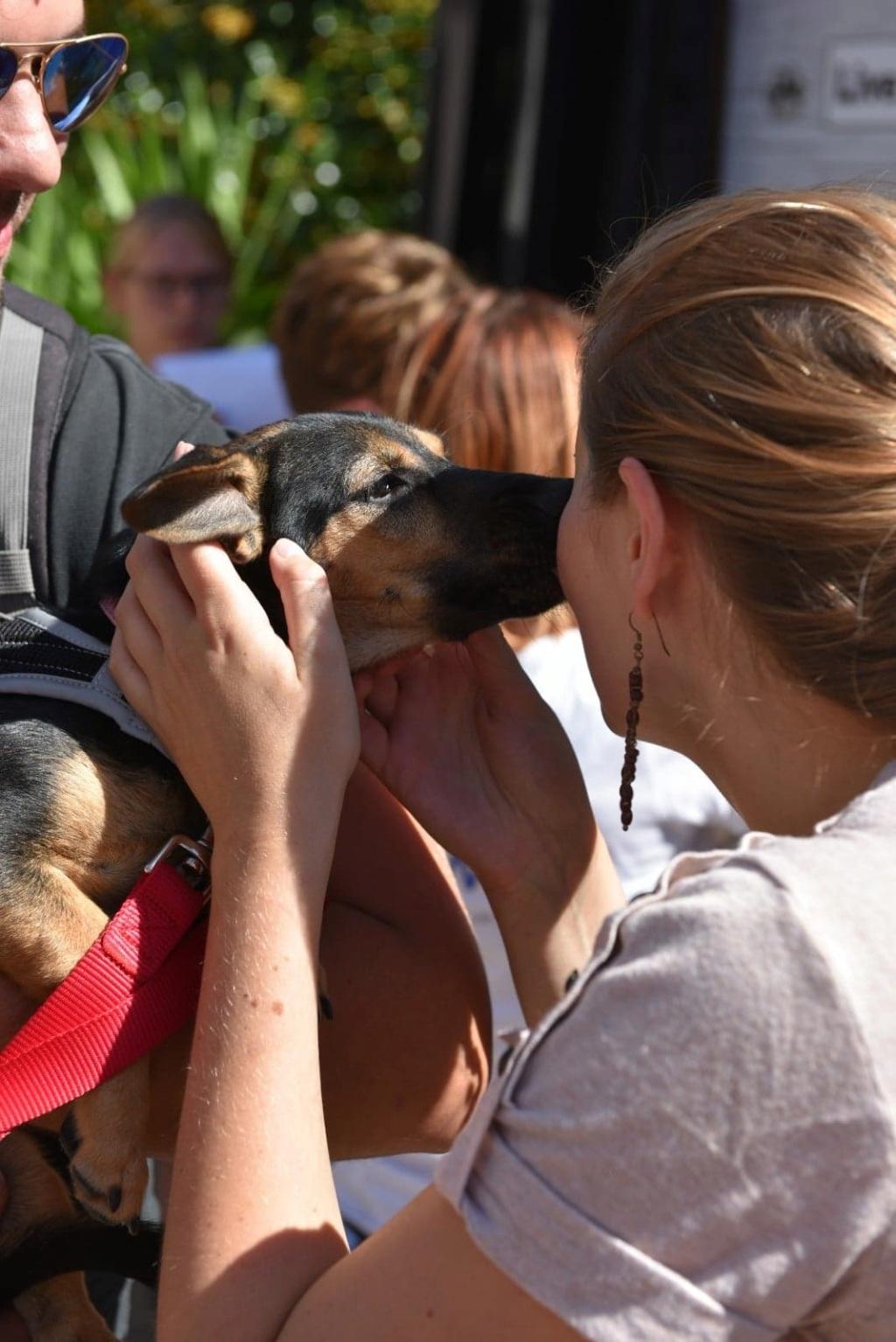 Etna - femelle - chez Andreea (Târgu Frumos) - reservé adoption 67 41403511