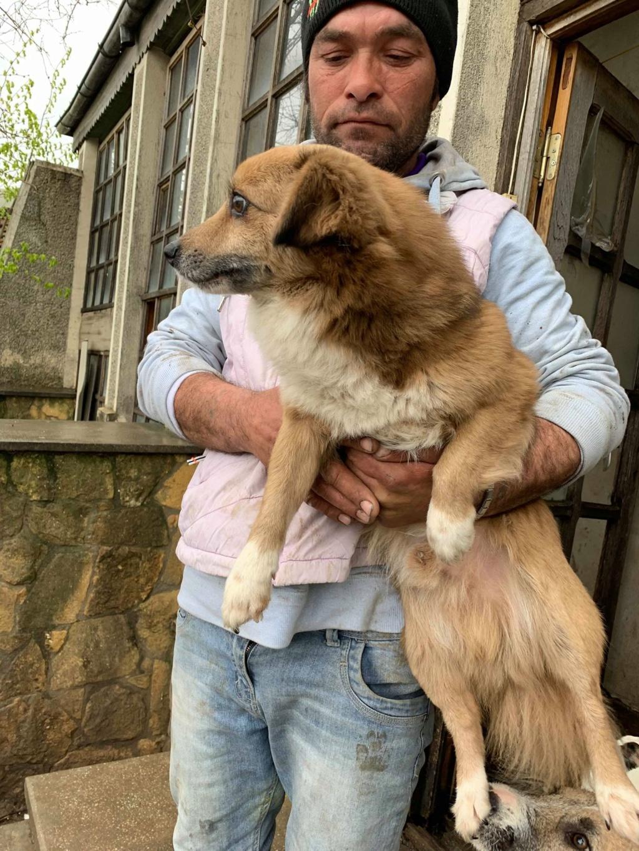 Aiko- mâle -dans la maison abandonnée de Târgu Frumos 57076215