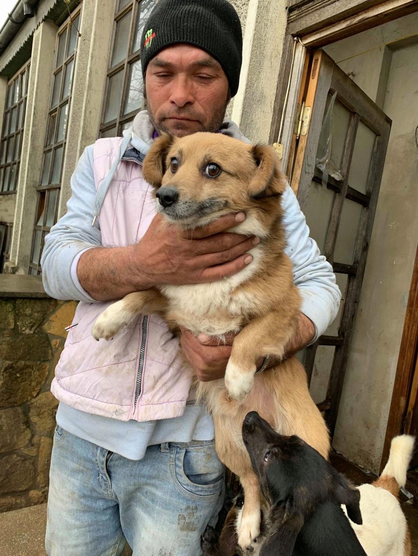 Aiko- mâle -dans la maison abandonnée de Târgu Frumos 57079811
