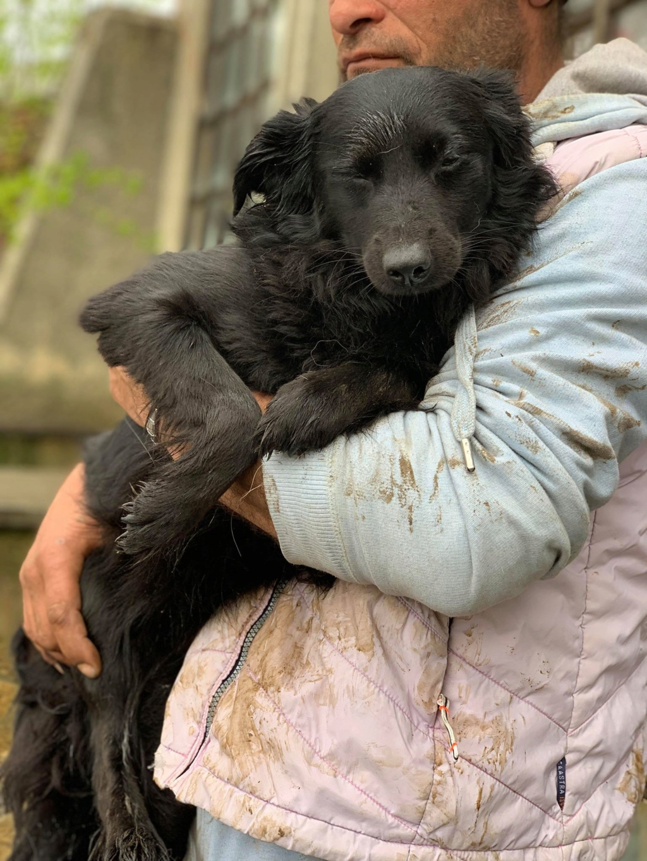 Olga- dans la maison abandonnée à Târgu Frumos 57168212