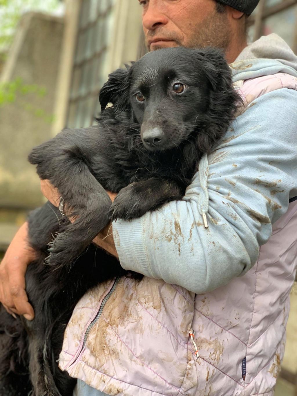 Olga- dans la maison abandonnée à Târgu Frumos 57258215