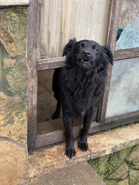 Olga- dans la maison abandonnée à Târgu Frumos 57459310