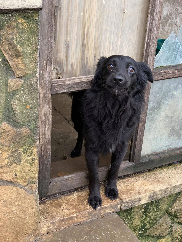 Olga- dans la maison abandonnée à Târgu Frumos 57486411